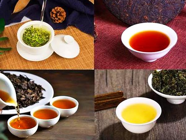绿茶 (135).jpg