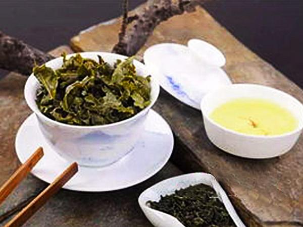 冰岛普洱绿茶的采摘