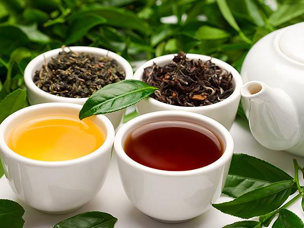 绿茶 (20).jpg