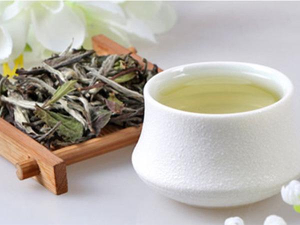 喝白茶对人体的种种好处