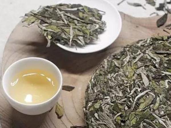 安吉白茶的饮用禁忌