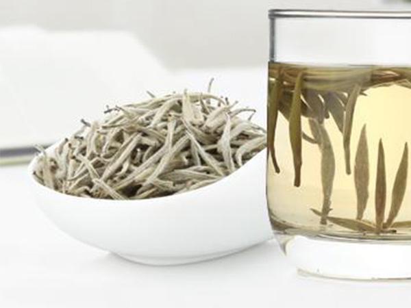 安吉白茶如何品尝?