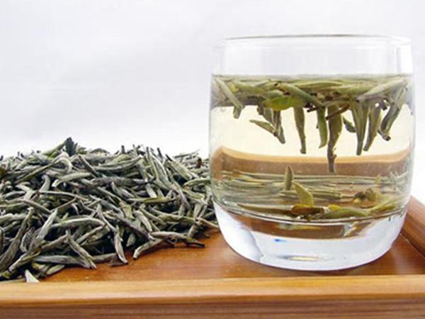 白茶的药效性能很好,有着灵妙的保健作用。